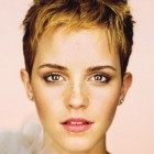 Hairstyles pixie cut