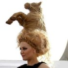 Funny wedding hair