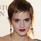 Pixie haircut pictures