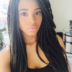 B ack braid hairstyles pictures